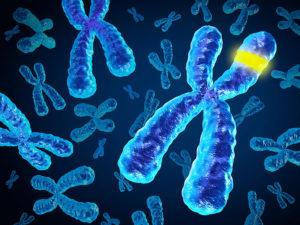 आनुवंशिक विकृती (Genetic disorder)