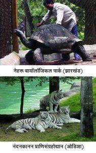 प्राणिसंग्रहोद्यान (Zoological garden)