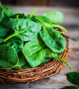 Read more about the article पालक (Spinach)