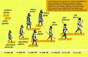 मानवाची उत्क्रांती (Evolution of Man)