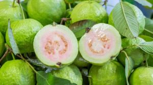पेरू (Guava)