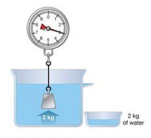आर्किमिडीज तत्त्व (Archimedes Principle)