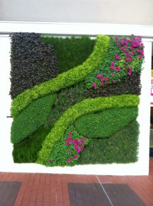 हिरवी भिंत (Green Wall)