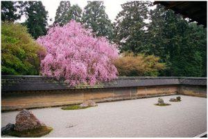 रायऑन-जी (Ryōan-Ji)