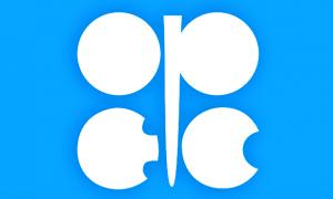 ओपेक (Organization of the Petroleum Exporting Countries - OPEC)