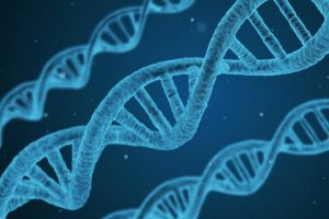 Read more about the article जनुक (Gene)