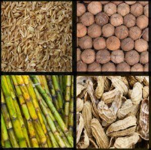 जैव वस्तुमान (Biomass)