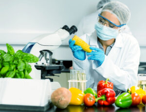 अब्जांश अन्न उद्योग (Nanotechnology in the Food Industry)