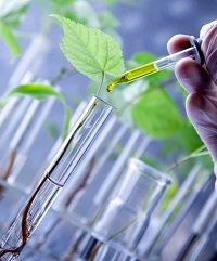 Read more about the article जैवतंत्रज्ञान (Biotechnology)