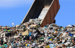 Read more about the article घन कचरा (Solid waste)