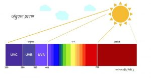 जंबुपार प्रारण (Ultravoilet radiation)