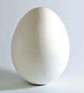 अंडे (Egg)