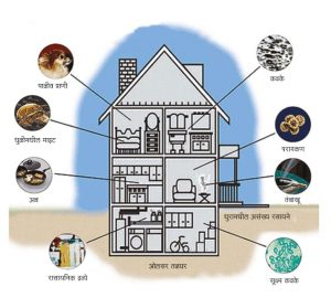अंतर्गेही प्रदूषण (Indoor Pollution)