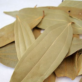 Read more about the article तमाल (Indian cassia)
