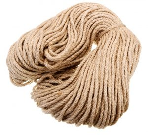 Read more about the article ताग (Jute)