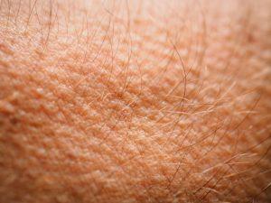त्वचा (Skin)