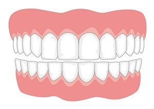 Read more about the article दात (Teeth)
