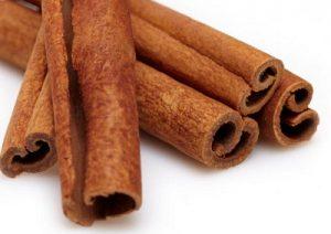 दालचिनी (Cinnamon tree)