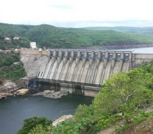 Read more about the article धरण परिसंस्था (Dam ecosystem)