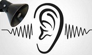 ध्वनी प्रदूषण (Noise pollution)