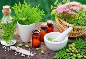 Read more about the article निसर्गोपचार (Naturopathy)