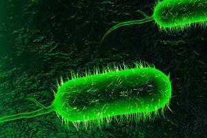 पटकी (Cholera)