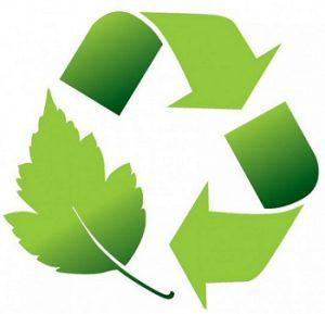 पर्यावरण व्यवस्थापन (Environment management)