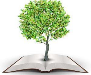 पर्यावरण शिक्षण (Environment education)