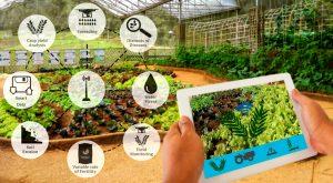 अब्जांश तंत्रज्ञानाचे कृषीक्षेत्रामधील उपयोग (Application of Nanotechnology in Agriculture)