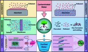 Read more about the article अब्जांश तंत्रज्ञान : पर्यावरण संरक्षण, प्रतिबंध आणि नियंत्रण (Nanotechnology : Environmental Protection, Prevention & amp; Control)