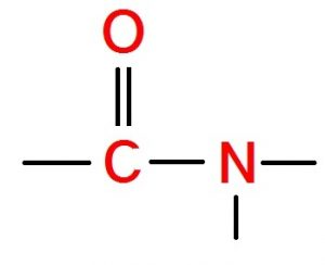 Read more about the article अमाइडे (Amides)