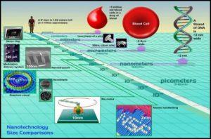 अब्जांश पदार्थांचे प्राण्यांवरील दुष्परिणाम (Nanotechnology : Side effects related to animals)