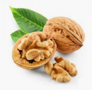 Read more about the article अक्रोड (Walnut)