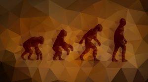 उत्क्रांती (Evolution)