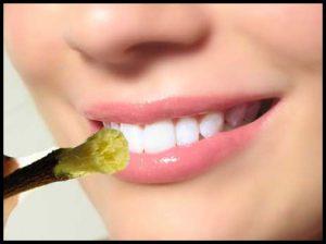 दंतधावन व जिव्हानिर्लेखन (Tooth Brushing andtongue cleaning)