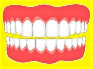 दंत्य मानवशास्त्र (Dental Anthropology)