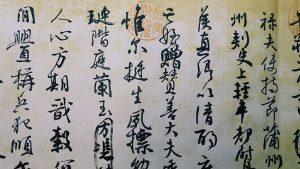 चिनी भाषा ( Chinese language)