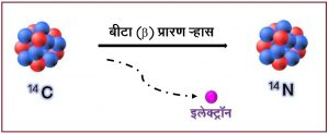कार्बन-१४ कालमापन पद्धती (Radiocarbon or Carbon-14 Dating)