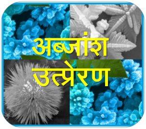 Read more about the article अब्जांश उत्प्रेरण (Nanocatalysis)