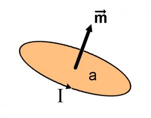 बोर मॅग्नेटाॅन (Bohr magneton)