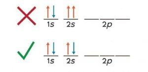 पाउली विवर्जन तत्त्व (Pauli exclusion principle)