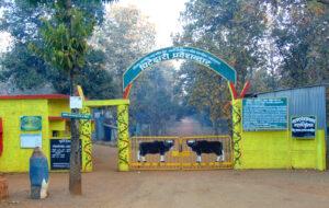 नागझिरा अभयारण्य (Nagzira Wildlife Sanctuary)