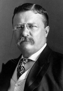 थीओडर रूझवेल्ट (Theodore Roosevelt)