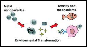 अब्जांश तंत्रज्ञान : पर्यावरण विष-चिकित्सा (Environmental Nanotoxicology)