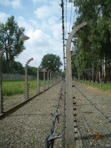 Read more about the article बंदिछावण्यांचे पुरातत्त्व (Internment Camp Archaeology)