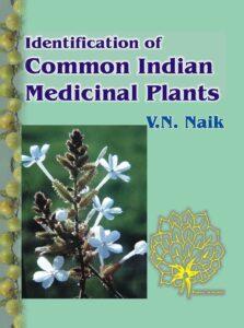 Read more about the article नाईक, वासुदेव नारायण (Naik,Vasudev Narayan)