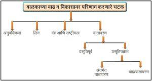 बालकाच्या वाढ व विकासावर परिणाम करणारे घटक ( Factors affecting the growth and development of the child)