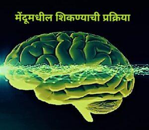 मेंदूमधील शिकण्याची प्रक्रिया (Learning Process in Brain)