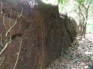 कासारदुर्ग (Kasardurg)