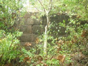 विजयगड (Vijaygad)